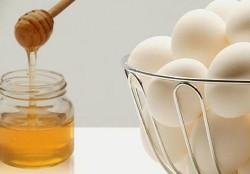 Honey, Eggs, Garden & More!